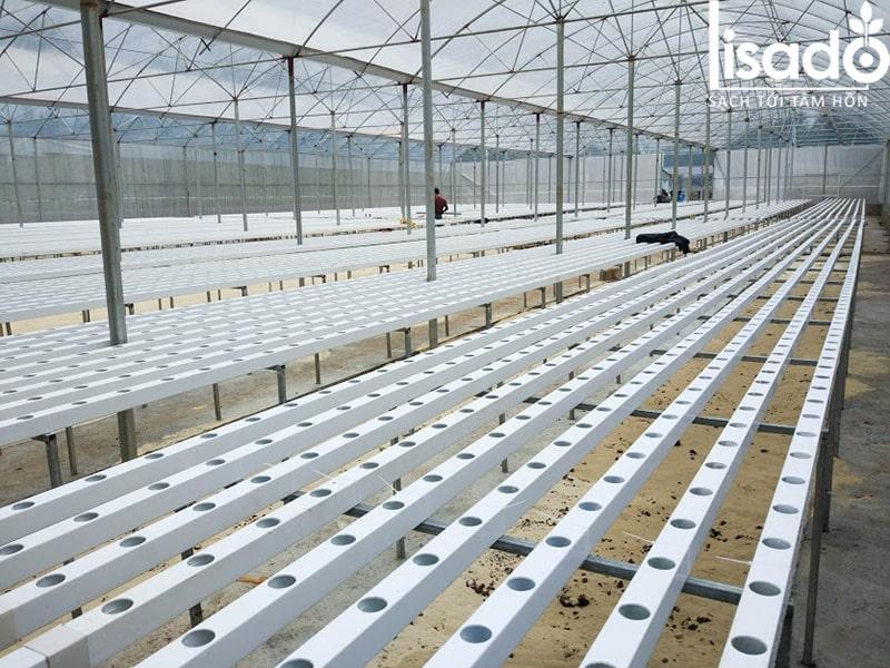Ống nhựa vuông trồng rau thủy canh Lisado chuyên dụng, giá tốt