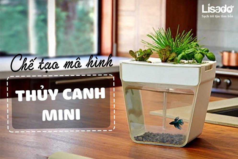 Thủy canh mini