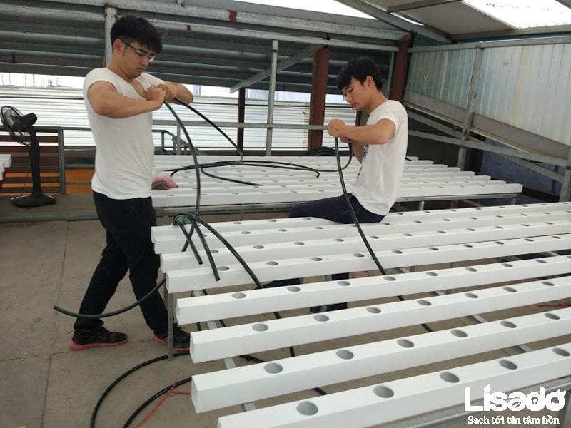 Công trình rau sạch tại Thị trấn Hương Canh - Vĩnh Phúc được ứng dụng các vật tư thủy canh tiên tiến nhất