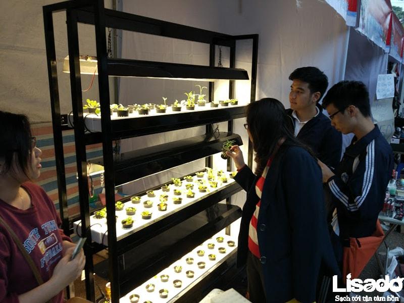 Lisado mang mô hình trồng rau thủy canh đến hội chợ làm cha mẹ