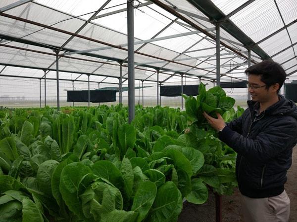 Vậy mua dung dịch trồng rau thủy canh giá rẻ, chất lượng tốt ở đâu?