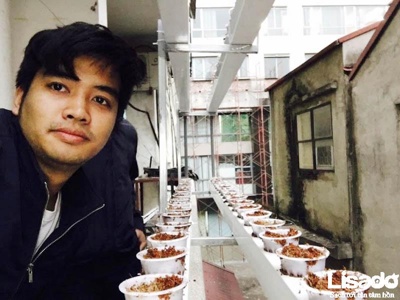 Thông tin công trình trồng rau thủy canh của gia đình chị Tú, Đường Láng, Hà Nội