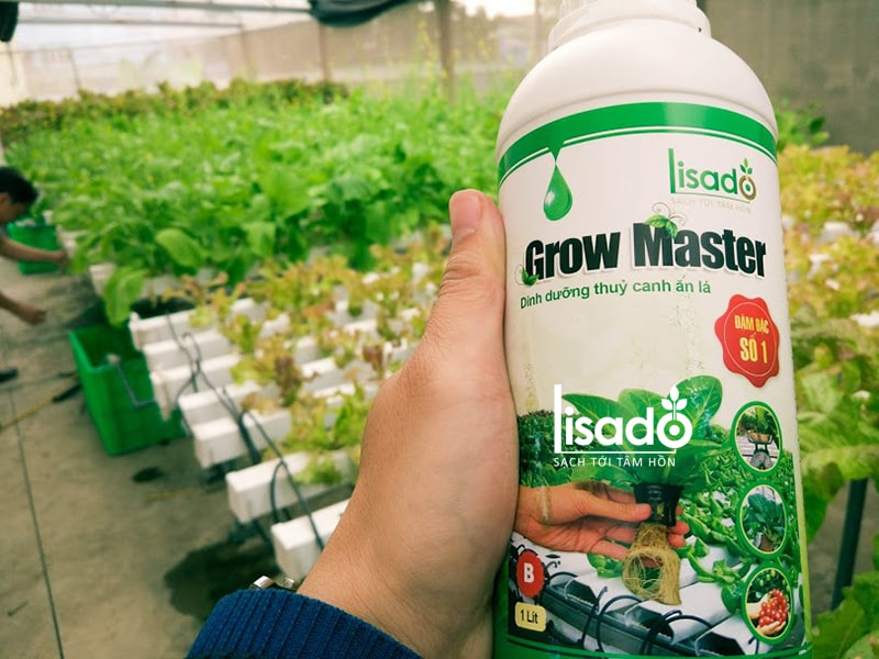Dung dịch thủy canh Grow Master