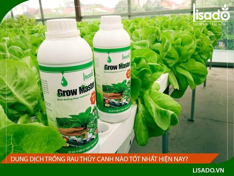 Dung dịch trồng rau thủy canh nào tốt nhất hiện nay?