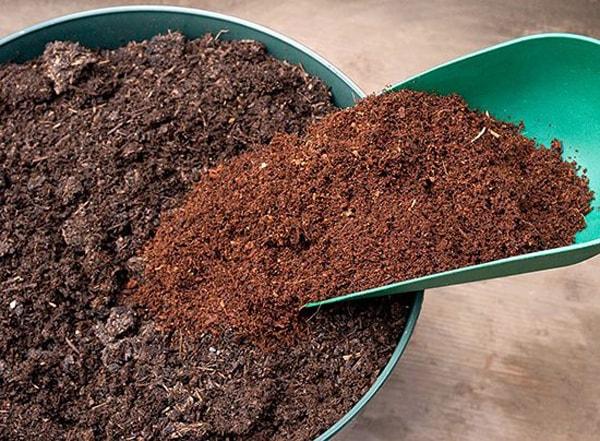 Gợi ý cách xử lý giá thể trồng rau thủy canh