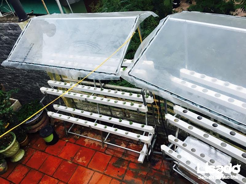 Công trình trồng rau thuỷ canh nhà phố cô Vân - Vân Hồ 3 - Hà Nội