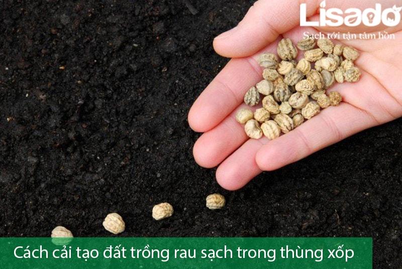 Gợi ý cách cải tạo đất trồng rau sạch trong thùng xốp