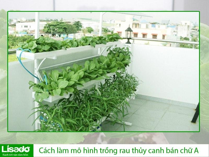 Cách làm mô hình trồng rau thủy canh ban công bán chữ A