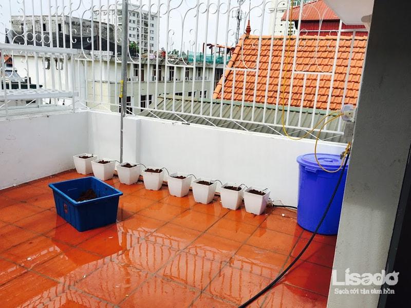 Lisado áp dụng phương pháp bán thủy canh tưới nhỏ giọt để trồng cà chua