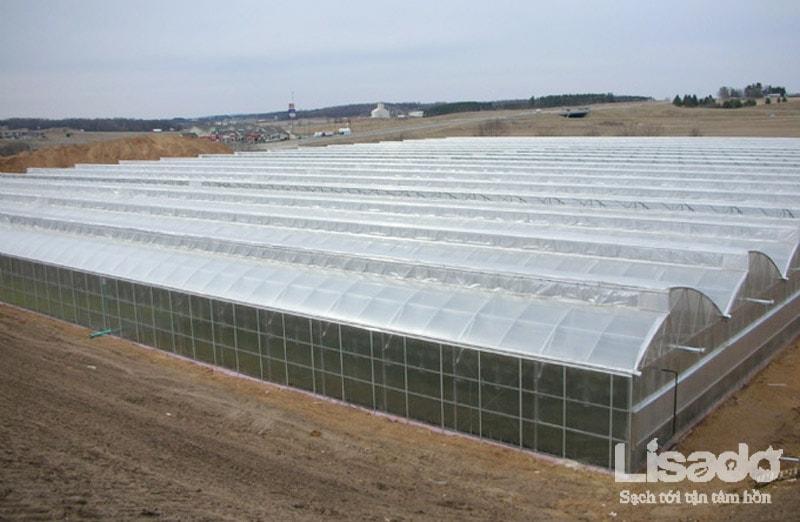 Hệ thống nhà màng trồng rau sạch công nghệ cao