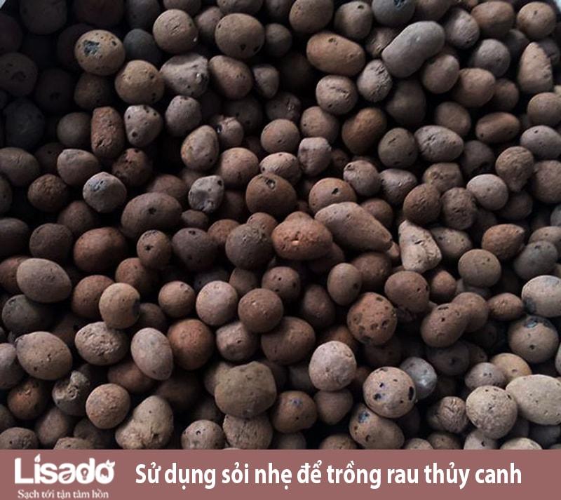 Làm thế nào để chọn hệ thống sỏi nhẹ cho trồng rau thủy canh?