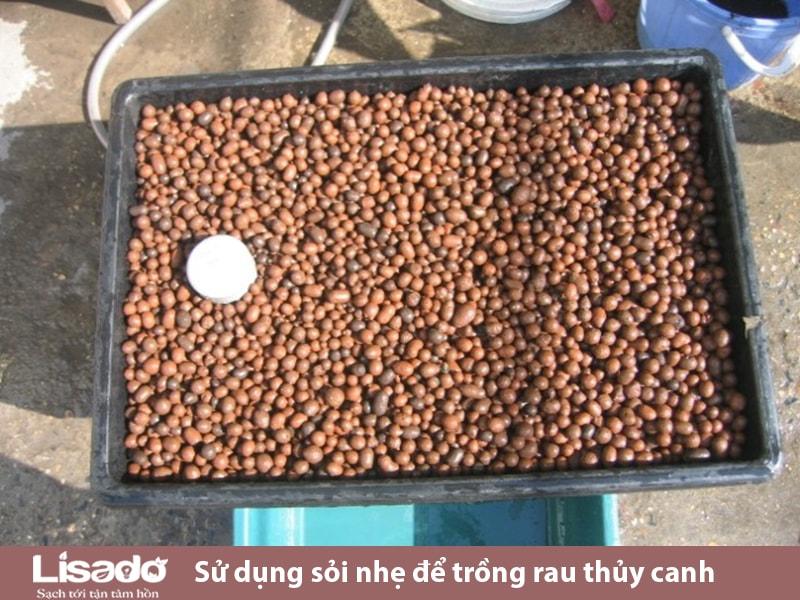 Hướn dẫn sử dụng sỏi nhẹ để trồng rau thủy canh