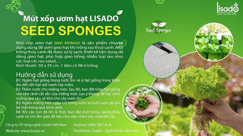 Nhãn mút xốp ươm hạt Seed Sponges