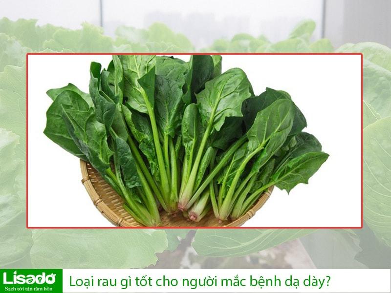 Trồng rau sạch tại nhà: loại rau gì tốt cho người mắc bệnh dạ dày?