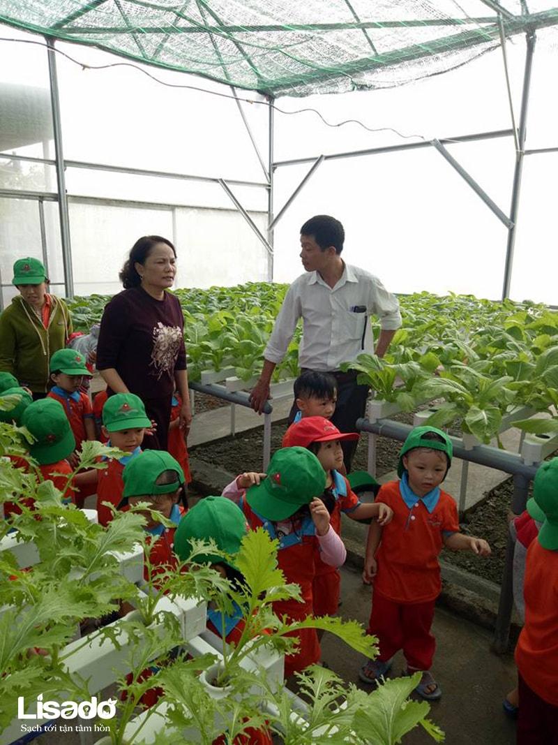 Các nông dân nhí trường mầm non Nguyễn Du đi dã ngoại mô hình trồng rau thủy canh