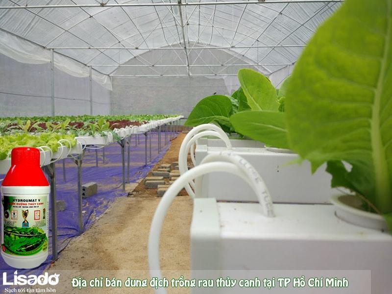 Địa chỉ bán dung dịch trồng rau thủy canh tại TP Hồ Chí Minh