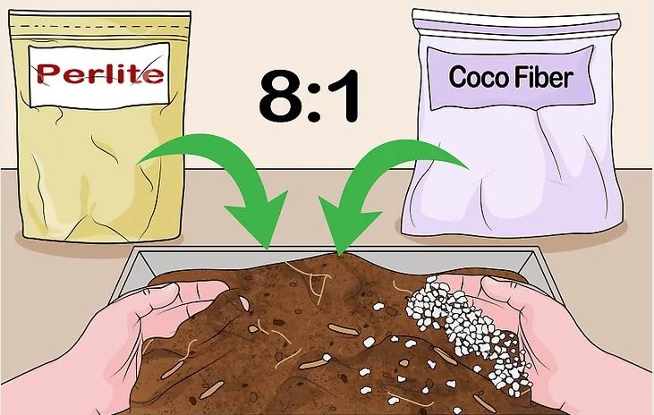 Tạo hỗn hợp chất nền trong chậu cây