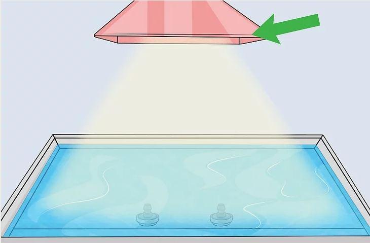 Thiết lập đèn cung cấp ánh sáng nếu bạn thực hiện nuôi trồng trong nhà