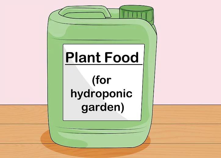 Chuẩn bị dinh dưỡng cho cây