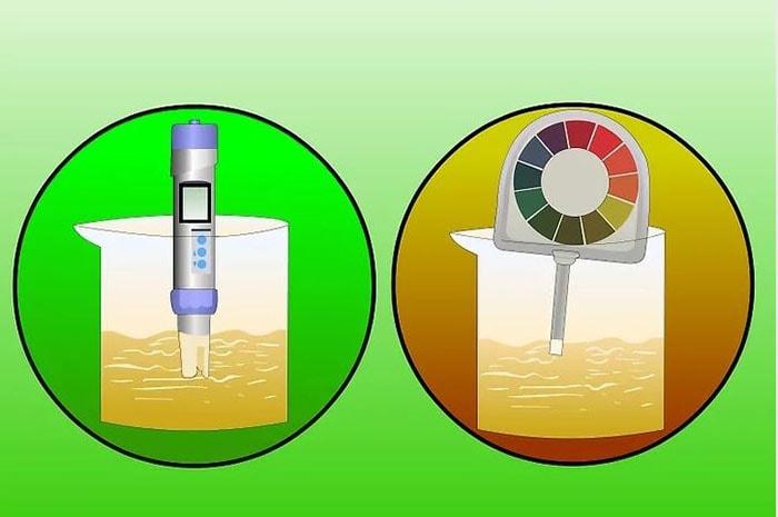 ử dụng máy dò kỹ thuật số để đo độ đậm đặc và độ pH trong dung dịch dinh dưỡng
