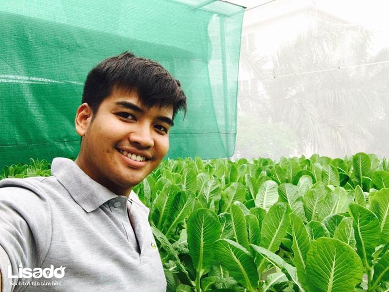 Vai trò của Silic trong trồng rau thủy canh