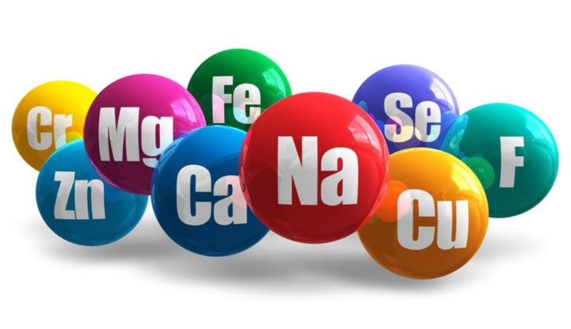 Vai trò quan trọng của 6 nguyên tố vi lượng trong dung dịch thủy canh