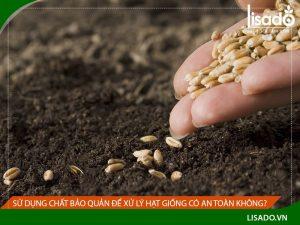 Sử dụng chất bảo quản để xử lý hạt giống có an toàn không?