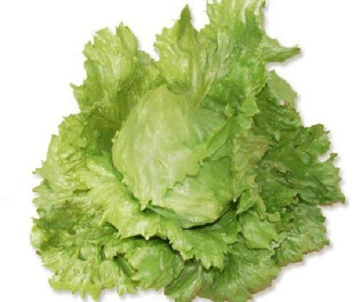Hạt giống xà lách Iceberg Hà Lan chất lượng cao, giá tốt