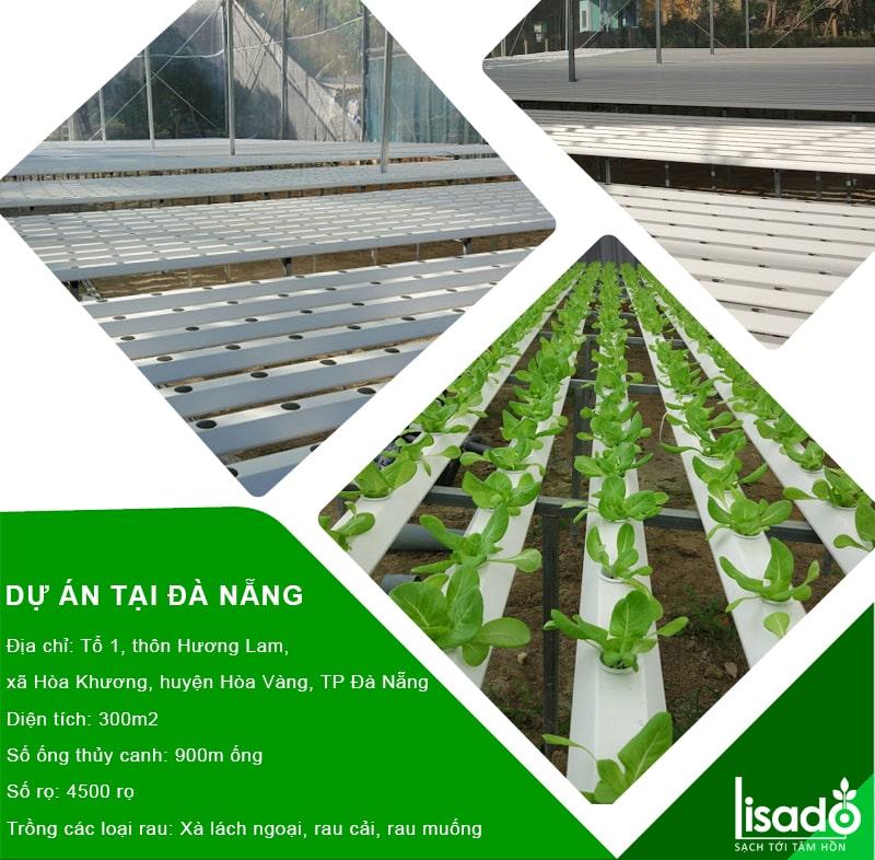 Dự án sử dụng ống lục giác Lisado tại Đà Nẵng
