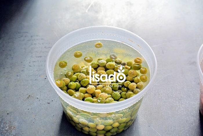 Công đoạn ngâm hạt giống