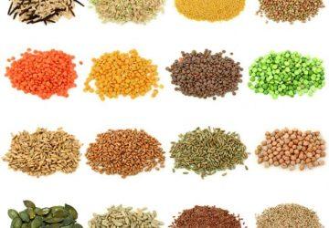 Cách nhận biết và ưu điểm của hạt giống chất lượng cao