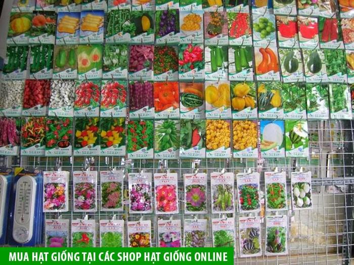 Mua hạt giống tại các shop hạt giống online