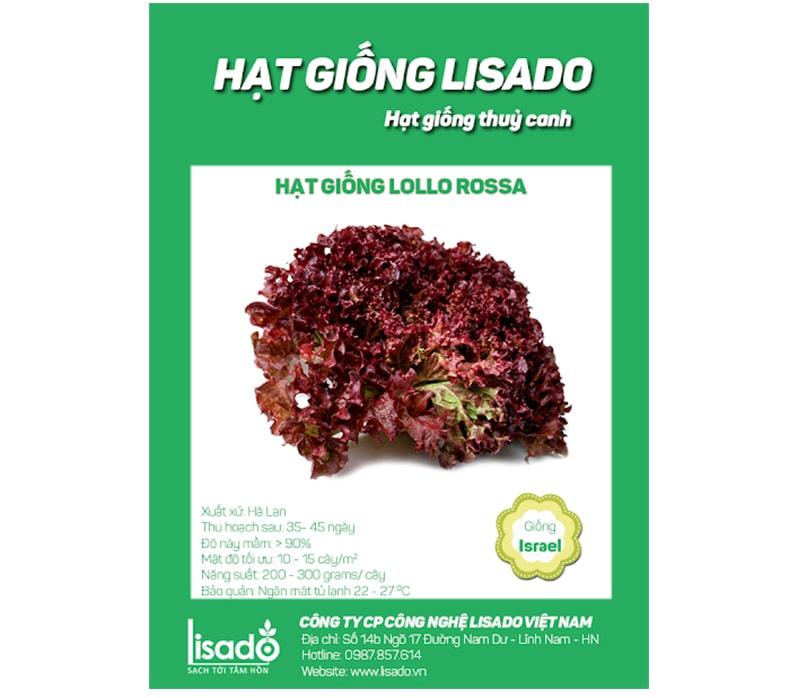Giá thành hạt giống ở Lisado ưu đãi, cạnh tranh