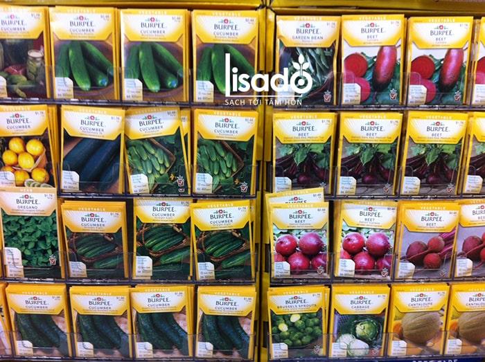 Nơi bán hạt giống ở Tp. Hồ Chí Minh