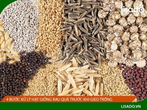 4 bước xử lý hạt giống rau quả trước khi gieo trồng