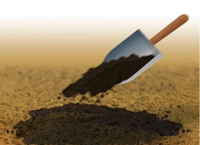 Phủ lên trên hạt giống 0.5 inch (1.3 cm) đất