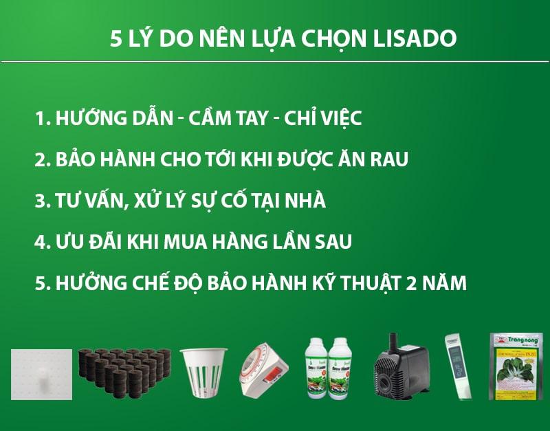 5 lý do nên chọn lisado khi thiết kế giàn thủy canh
