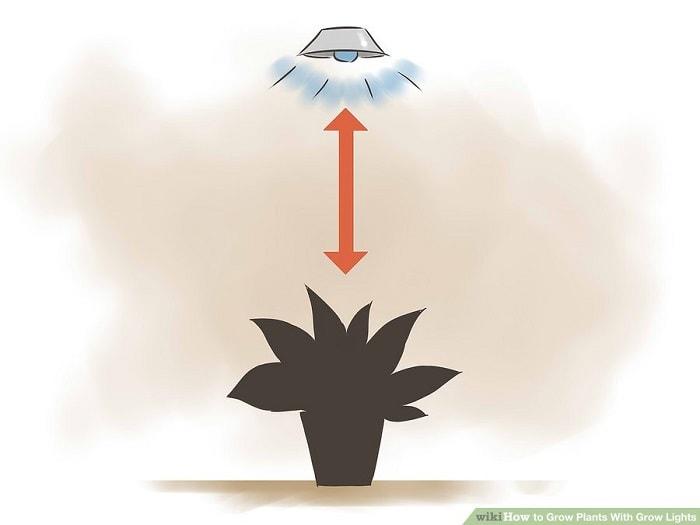 Thiết lập hệ thống đèn của bạn