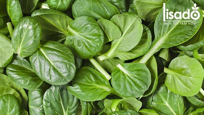 Rau cải bó xôi giàu chất ô xi hóa tốt cho sức khỏe