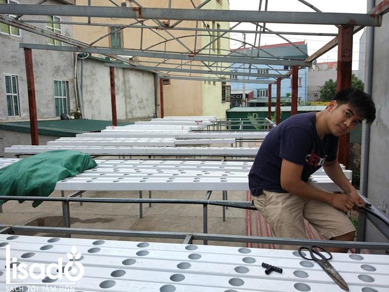 Cần chuẩn bị những gì khi xây dựng hệ thống thủy canh sân thượng?