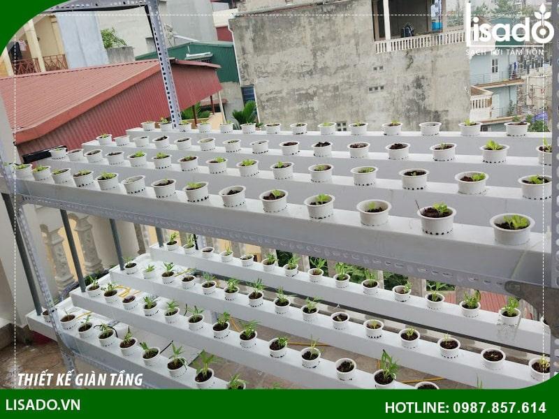 Thiết kế giàn trồng rau thủy canh tầng