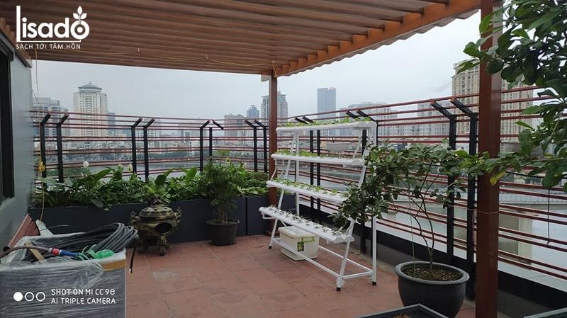 Giàn trồng rau thủy canh sân thượng