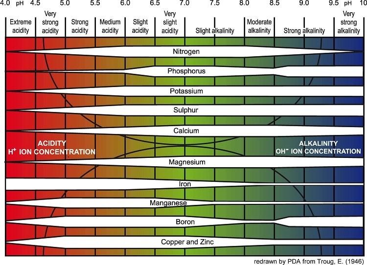 Các thông số đánh giá nồng độ pH trong môi trường thủy canh