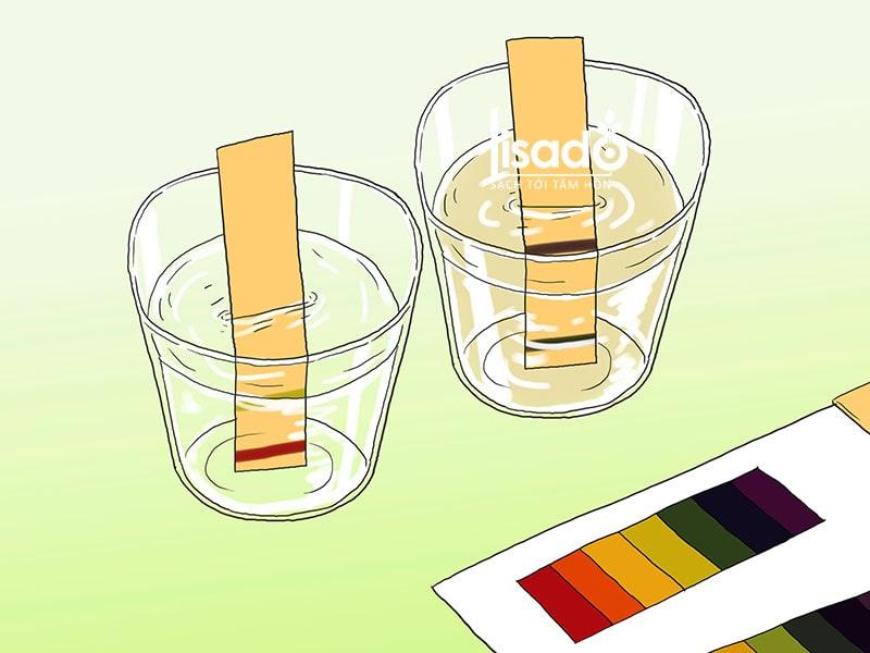 Dùng quỳ tím để kiểm tra độ pH trong dung dịch thủy canh