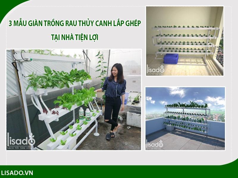 3 mẫu giàn trồng rau thủy canh lắp ghép tại nhà đơn giản