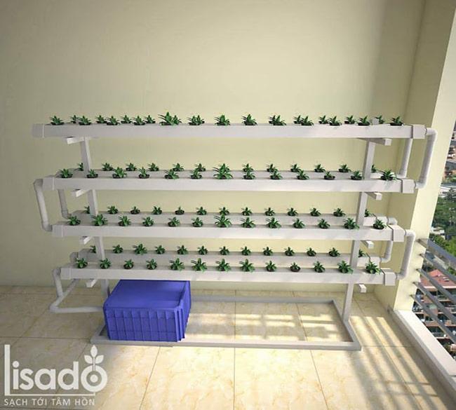 Hệ thống giàn thủy canh trồng rau
