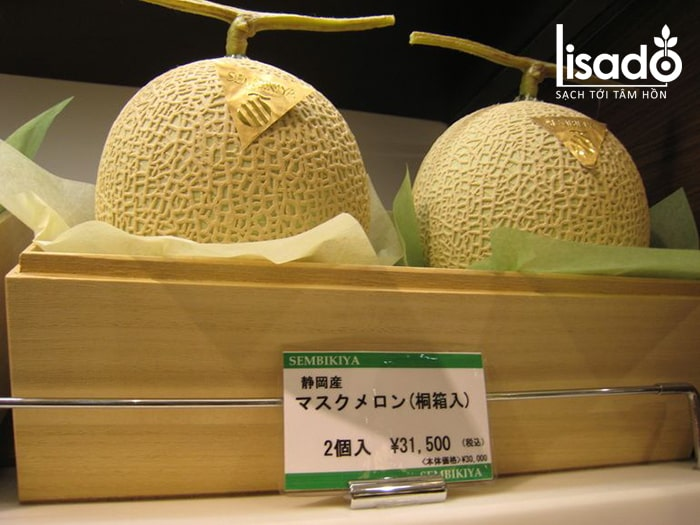 Dưa lưới Nhật Bản được bày bán khá nhiều trên các siêu thị