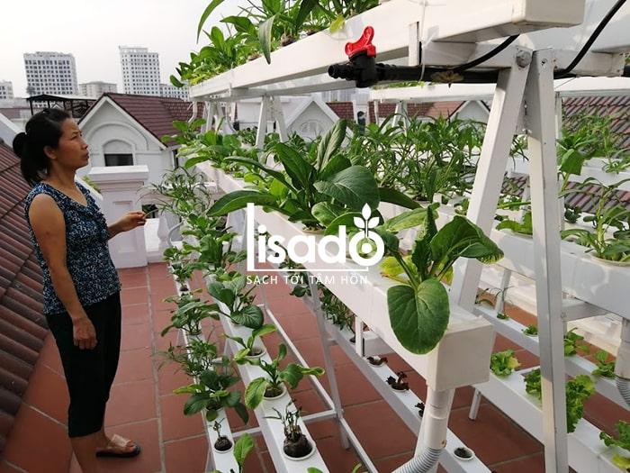 Công trình giàn rau thủy canh nhà anh Cảng (Vinhome Long Biên-Hà Nội)