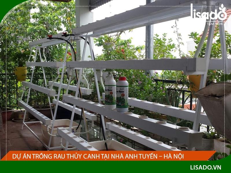 Dự án trồng rau thủy canh tại nhà anh Tuyến – Hà Nội