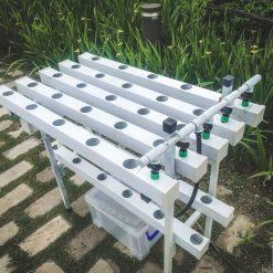 Giàn trồng rau thủy canh mini 2 tầng dài 1m
